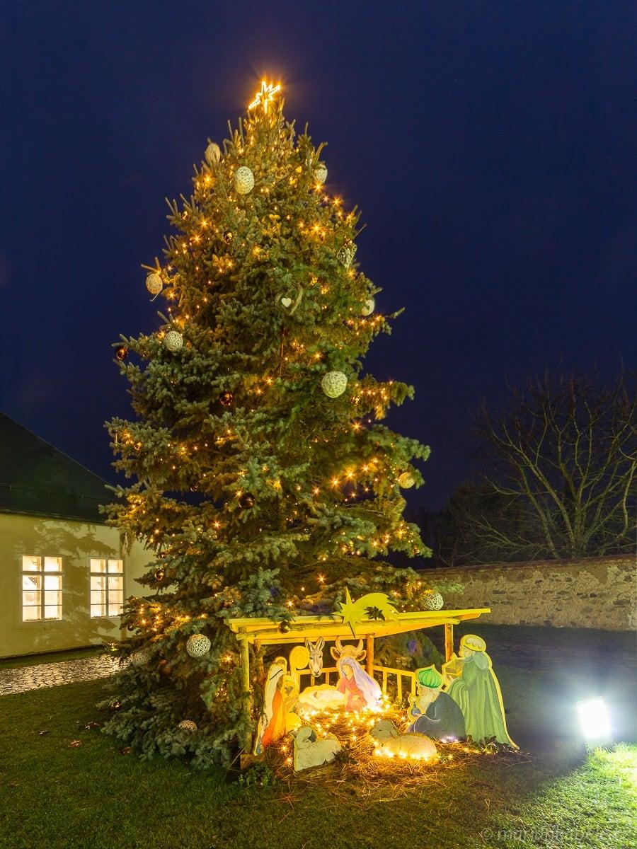 Vánoční strom –zámek Svijany.
