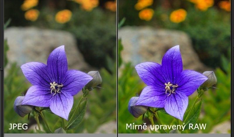 Fotografie v RAW po mírné úpravě, srovnání s formátem JPEG.