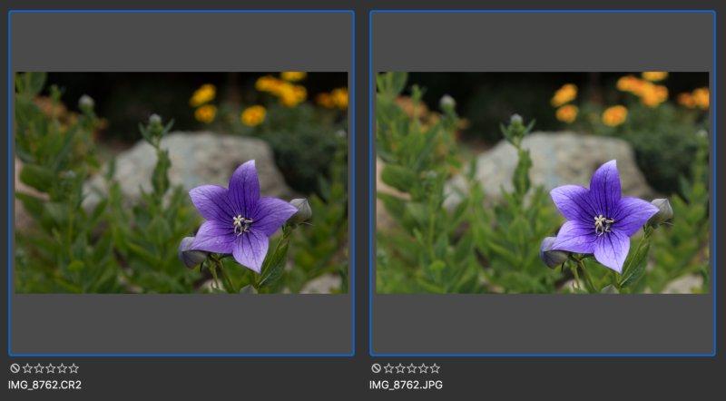 Fotorgafie ve formátu RAW a JPEG.