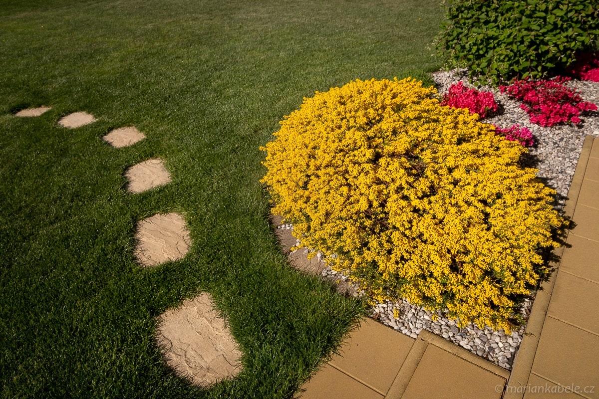 Fotografování zahrad prozahradníky